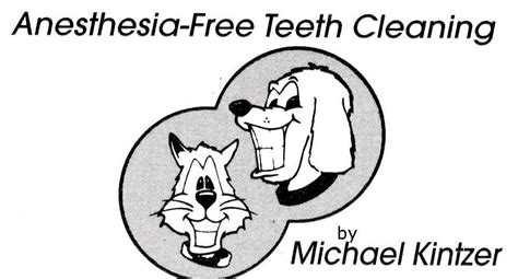 anesthesia free teeth cleaning canine care anesthesia free teeth cleaning on www thedapperdog