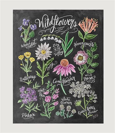 printable chalkboard flowers chalk art floral art wildflower field guide print
