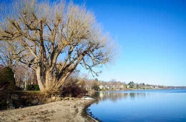 public boat r near honeymoon island 25 best new york lakes
