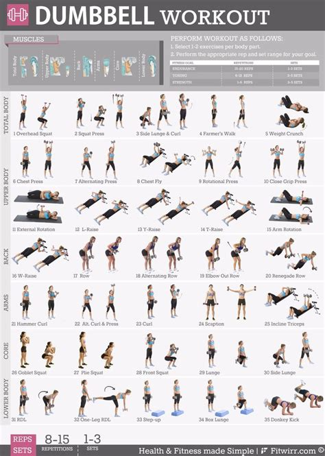 best 25 dumbbell workout plan ideas on arm