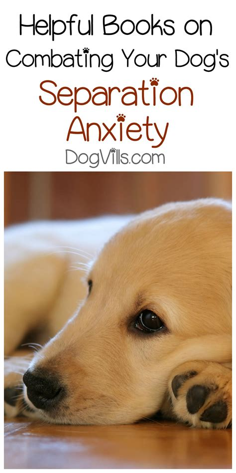 helping dogs with separation anxiety 3 helpful books on combating your s separation anxiety