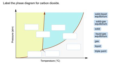 label the phase diagram for carbon dioxide label the phase diagram for carbon dioxide chegg