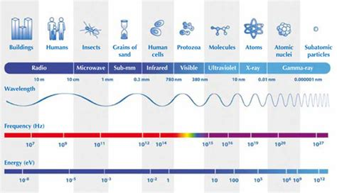 uv l and wavelength more than meets the eye the electromagnetic spectrum