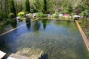 Backyard Pond Pool 67 Cool Backyard Pond Design Ideas Digsdigs