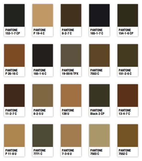 tavola dei colori per capelli colore la tavolozza dei colori di diego vel 225 zquez