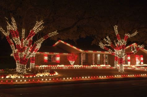 why hire a pro to hang your christmas lights proactive