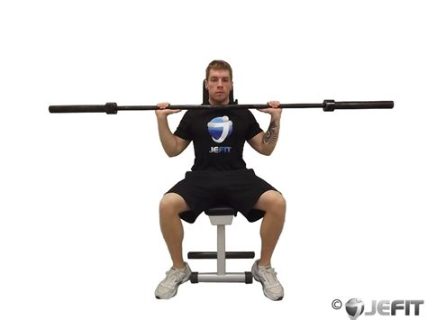 bench press deltoids barbell shoulder press exercise database jefit best