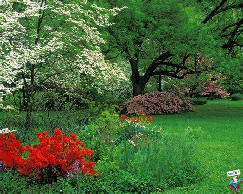 sfondi giardini fioriti sfondi desktop giardini botanici 83 in alta definizione hd