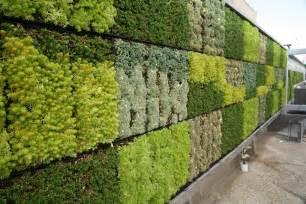 Green Walls by Tjsl S Green Wall Is Here Jefferson School Of