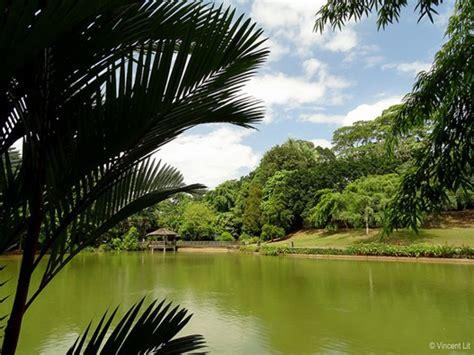 botanical gardens sg 3 concept to visit in singapore botanic garden