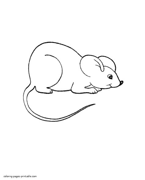 mouse coloring pages preschool mice coloring pages preschool murderthestout