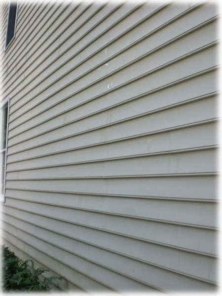 algae on house siding miracle powerwashing residential commercial services