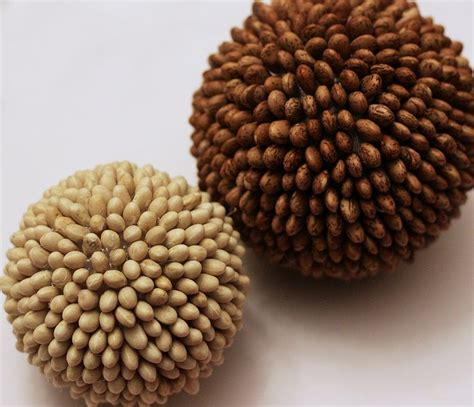 decorative bean balls 33 best images about decorative balls on pinterest pinto
