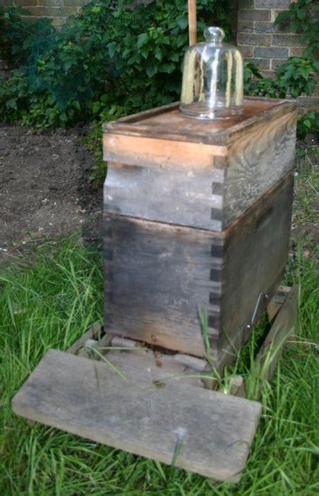 como hacer un panal de abejas como hacer un panal de abejas imagui