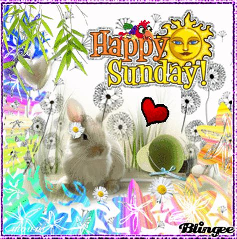 happy sunday    friends picture  blingeecom