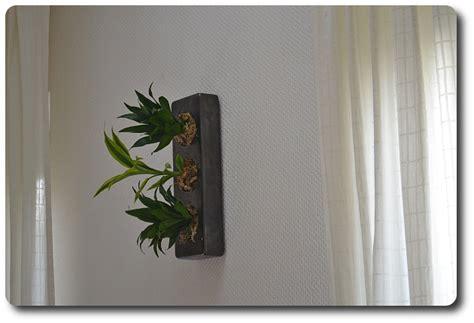 Pflanzen An Der Wand echte pflanzen an der wand update der flowerboxen