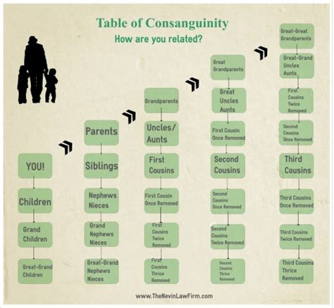 In Law Suite Plans table of consanguinity nashville bankruptcy attorney