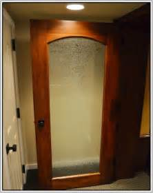 Frosted Glass Interior Doors Home Depot by Frosted Glass Pantry Door Home Design Ideas