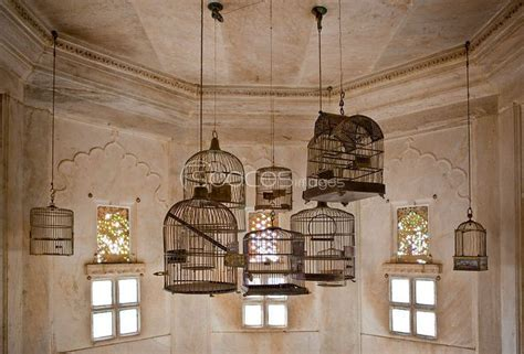 fashioned bird cage 17 best images about bird cages on birdhouses