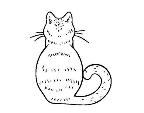 Dibujo De Gato De Espaldas Para Colorear Dibujos Net Three Kittens Coloring Page