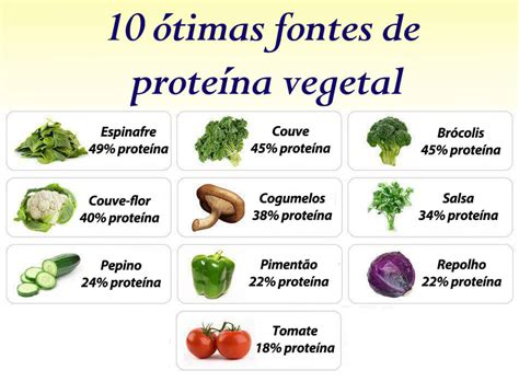 alimentos q tienen proteinas alimentos ricos em prote 237 na uma sele 231 227 o de primeira que