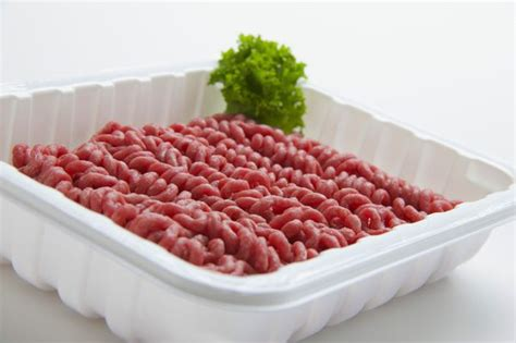can dogs eat ground beef is it okay for cats to eat ground beef pets