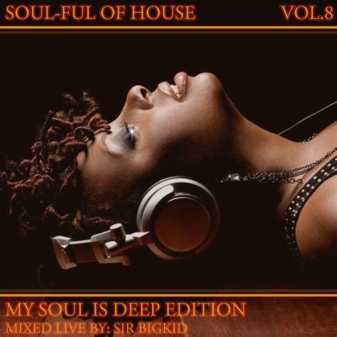 deep and soulful house music sir big kid soulful of house vol 8 my soul is deep soundplate com