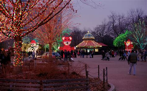 chicago zoo lights the best light displays in every state travel