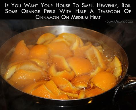 how to keep your house smelling good best 25 boil orange peels ideas on pinterest orange peel house smell good and cat