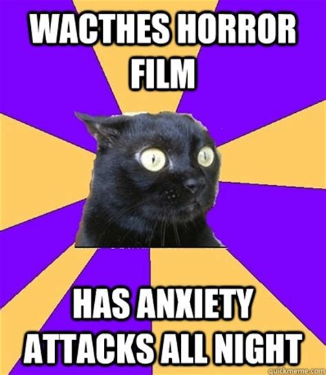 Anxiety Cat Memes - 17 best images about meme on pinterest anxiety cats and
