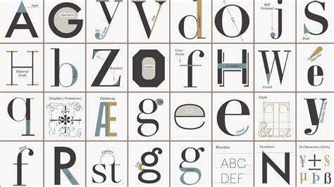 typography glyph data visualizations news photos wired