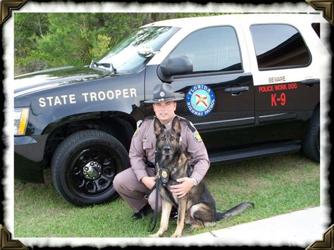Florida Highway Patrol Arrest Records K 9 Frenzy Florida Highway Safety And Motor Vehicles