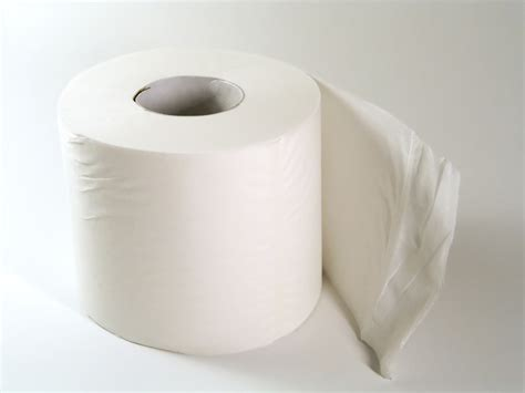 How To Make Toilet Tissue Paper - diary of a third age whatever happened to colored