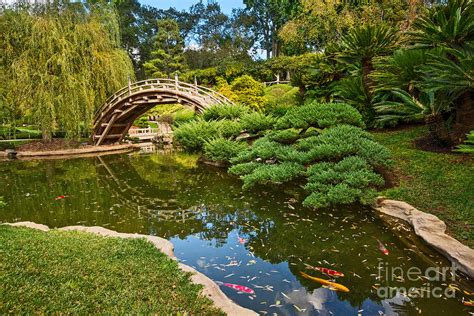 Huntington Library And Gardens by Lead The Way The Beautiful Japanese Gardens At The