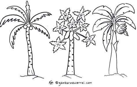 gambar mewarnai pohon terbaru gambar mewarnai