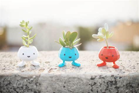 Succulent Planters mettez vous au jardinage avec ces mini pots 224 fleurs