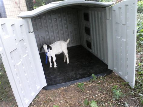 How To Build Goat Shed by Yia Building Plans For Goat Shelter