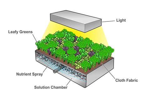Tiny Homes Florida new indoor farm in saudi arabia no greenhouse pesticides