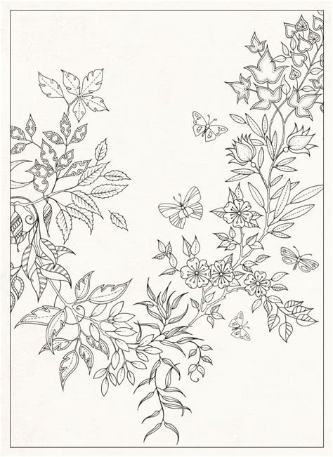 secret garden coloring book backordered secret garden 20 postcards co uk johanna basford