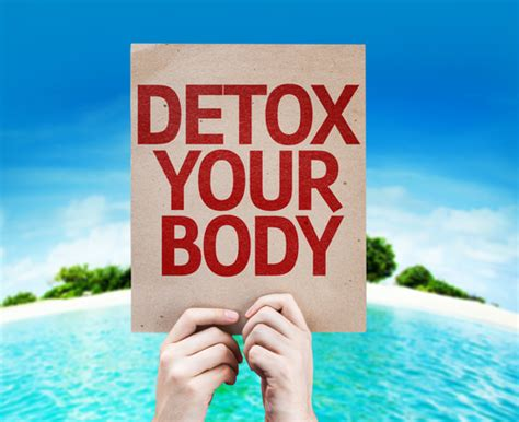 Daily Detox Meaning by Multivitamins For Daily Detox Whitaker Wellness Institute