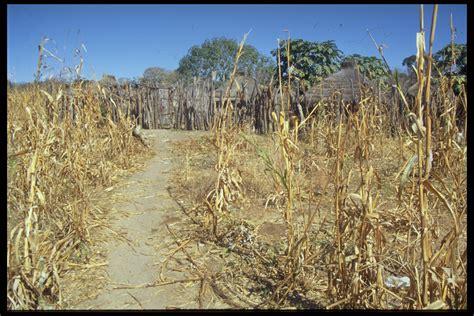 opinions on dry season