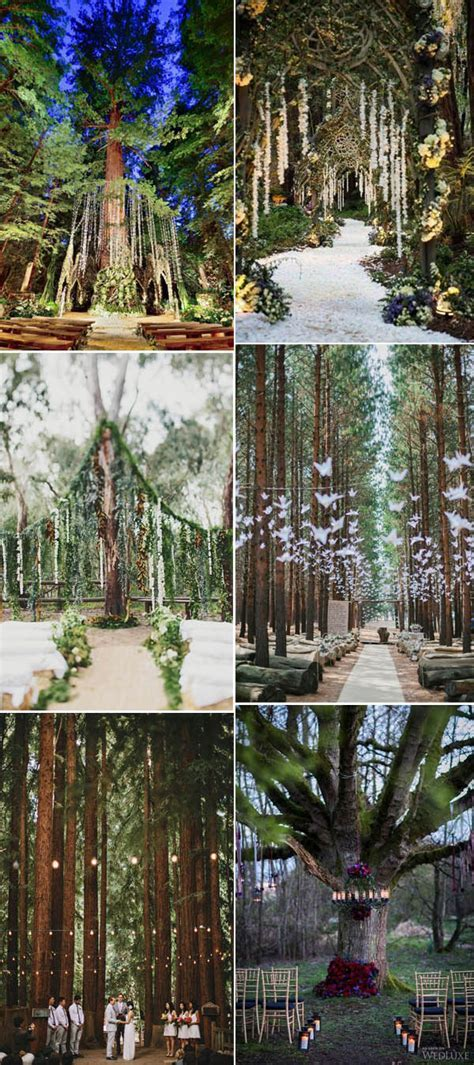 Enchanted Forest Wedding Ceremony