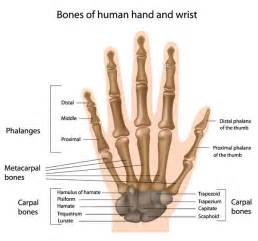 how long does it take a wrist sprain to heal answers on