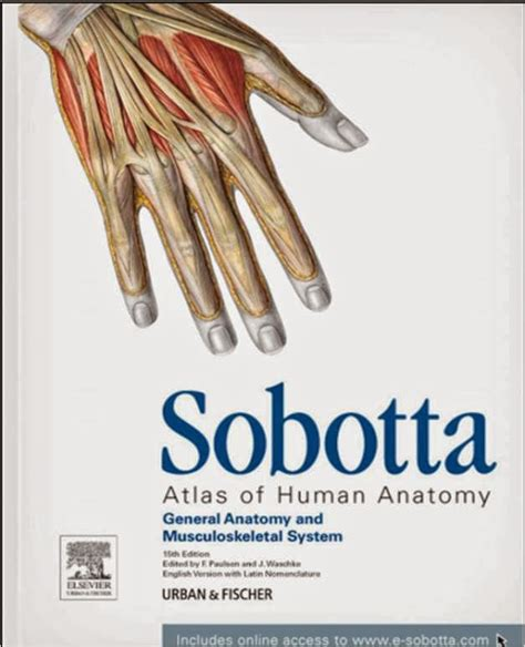 Sobotta Anatomy Atlas Free Download