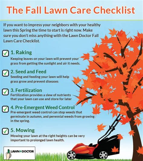 fall garden maintenance 1000 ideas about lawn care tips on lawn care
