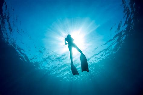freediving courses in bali apneista freediving community