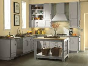 menards kitchen cabinets style advice for your home