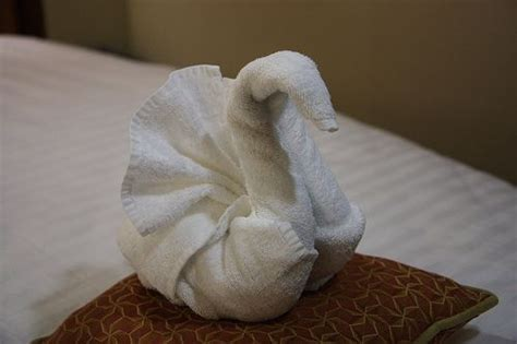 Paper Towel Origami - origami towels by steven maethlin via flickr