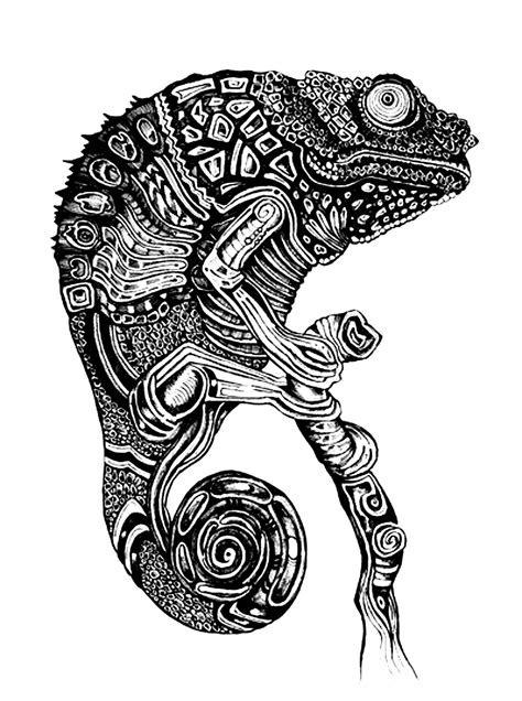 coloring pages for adults chameleon cameleon chameleons and lizards coloring pages for