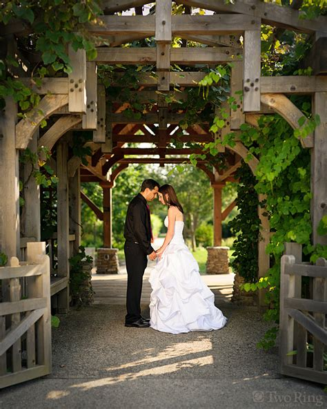 Wedding Dresses Nc by Wedding Dresses Asheville Nc Discount Wedding Dresses